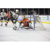 Quad City Mallards vs. the Fort Wayne Komets