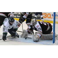 Brampton Beast Try to Hold off Florida Everblades