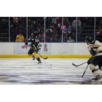 Mississippi RiverKings Defenseman Dean Willmott