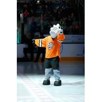 San Jose Barracuda Mascot Frenzy