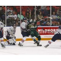 Tri-City Americans Tussle with the Everett Silvertips