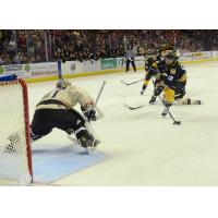 Mississippi RiverKings Forward Todd Hosmer Shoots at Knoxville Ice Bears Goaltender Brian Billett