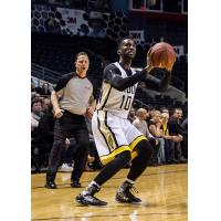 London Lightning Guard Warren Ward