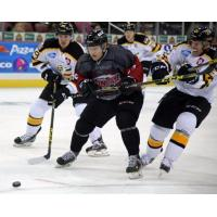 Wichita Thunder Chase the Puck vs. the Colorado Eagles