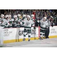 Iowa Wild Celebrate a Goal vs. the Chicago Wolves