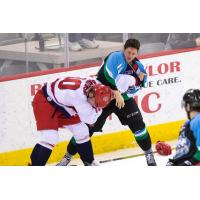 Alaska Aces Fight with the Allen Americans