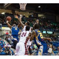 Saint John Mill Rats Guard Anthony Anderson Controls the Ball vs. the Orangeville A's
