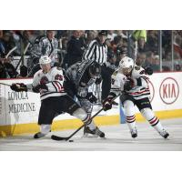 Chicago Wolves C Pat Cannone Battles Two Rockford IceHogs for the Puck