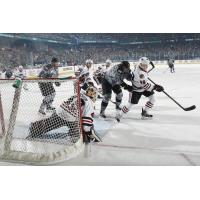 Chicago Wolves Press the Rockford IceHogs Net