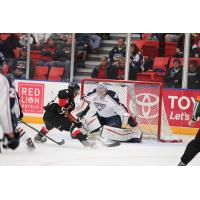 Tri-City Americans Goaltender Nick Sanders Stonewalls the Prince George Cougars