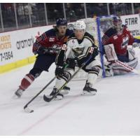 Forward Miles Koules with the Quad City Mallards