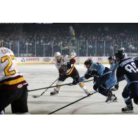 Chicago Wolves C Pat Cannone Handles the Puck vs. the Milwaukee Admirals