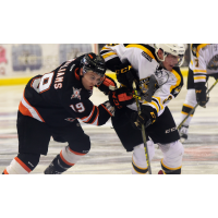 Omaha Lancers Battle the Green Bay Gamblers