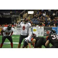 Amarillo Venom Quarterback Nate Davis vs. the Texas Revolution