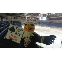 Cape Breton Screaming Eagles Mascot Screech