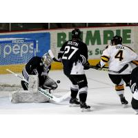 Idaho Steelheads Goaltender Branden Komm Stops the Colorado Eagles