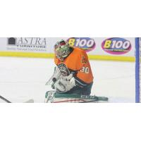 Quad City Mallards Goaltender Brody Hoffman