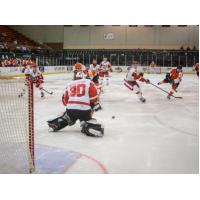 Port Huron Prowlers vs. the Danville Dashers