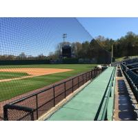 New Protective Netting on First Base Side of The Ballpark at Jackson