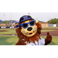 Wild Thing, the Mascot of the Washington Wild Things