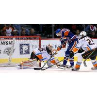 Bakersfield Condors Shoot on the San Diego Gulls