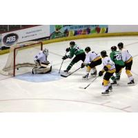 Luke Sandler of the Louisiana IceGators Scores vs. the Mississippi RiverKings
