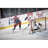 Chicago Wolves Defense vs. the Grand Rapids Griffins