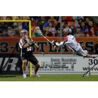 Boston Cannons in Action