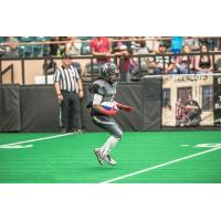 Duke City Gladiators WR Dello Davis