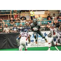 Duke City Gladiators WR Sedrick Johnson vs. the San Angelo Bandits
