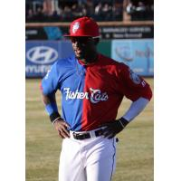 New Hampshire Fisher Cats Roemon Fields in Bipartisan Jersey