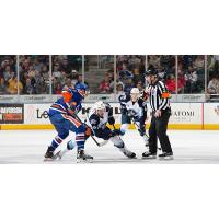 Bakersfield Condors vs. the Milwaukee Admirals