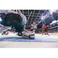 Missouri Mavericks vs. the Quad City Mallards