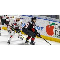 Lake Erie Monsters vs. the Rockford IceHogs