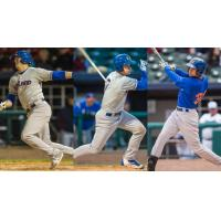 Ryon Healy, Matt Chapman and Viosergy Rosa of the Midland RockHounds