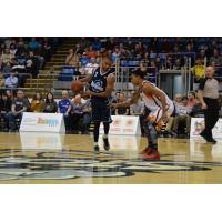 Halifax Hurricanes Point Guard Justin Johnson vs. the Island Storm