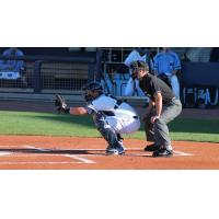 Charlotte Stone Crabs Catcher Nick Ciuffo