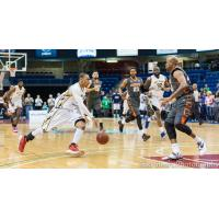 Saint John Mill Rats Head to the Hoop vs. the Moncton Miracles