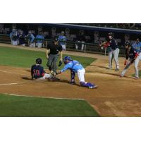 Myrtle Beach Pelicans Apply the Tag to the Salem Red Sox