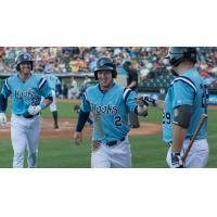 Alex Bregman of the Corpus Christi Hooks Congratulated by Teammates