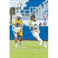 Florida Launch vs. the New York Lizards