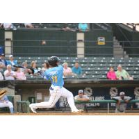 Gleyber Torres of the Myrtle Beach Pelicans