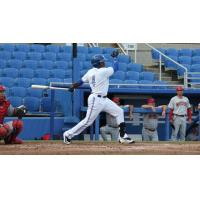 Dunedin Blue Jays LF David Harris