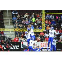 Tampa Bay Storm WR Phillip Barnett Grabs an Onside Kick vs. the Cleveland Gladiators