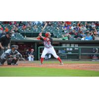 Seth Mejias-Brean of the Louisville Bats