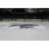 Tri-City Storm Logo at Center Ice