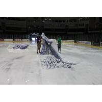 Tri-City Storm Logo Removal at Viaero Center