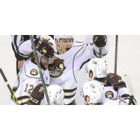 Hershey Bears Celebrate