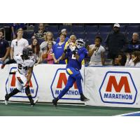 Tampa Bay Storm WR Julius Gregory vs. the Cleveland Gladiators