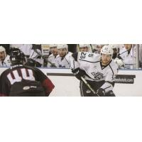 Ontario Reign vs. the Lake Erie Monsters